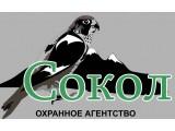 """Логотип """"Сокол"""" ООО Частная охранная организация"""