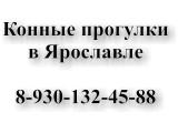 Логотип Конные прогулки в Ярославле